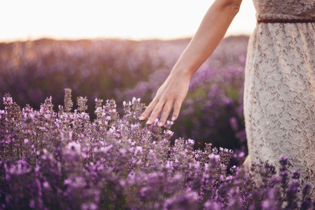 Op zoek naar parfum of een schoonheidsbehandeling? Een adres: L'Occitane